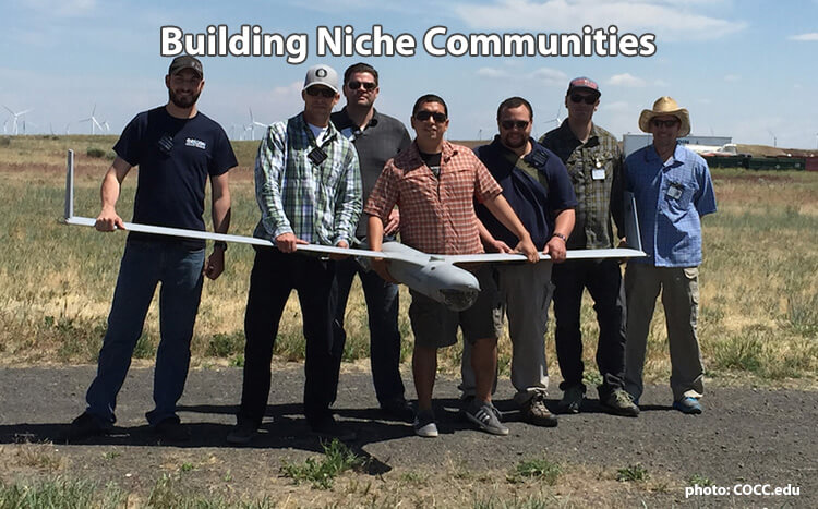 Building Niche Communities Online